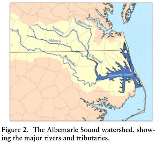Earliest Brocks In Virginia
